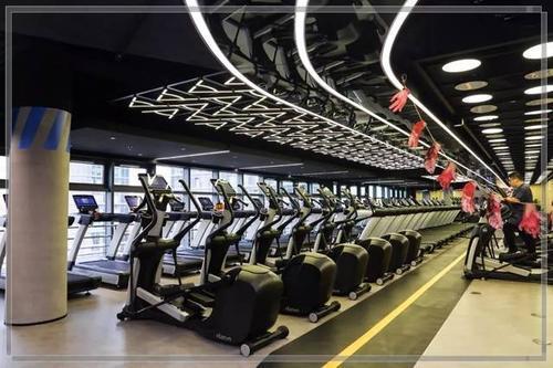 健身房短信群发的四大应用,效果立竿见影!